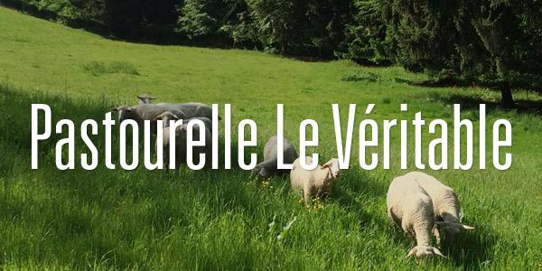 pastourelle