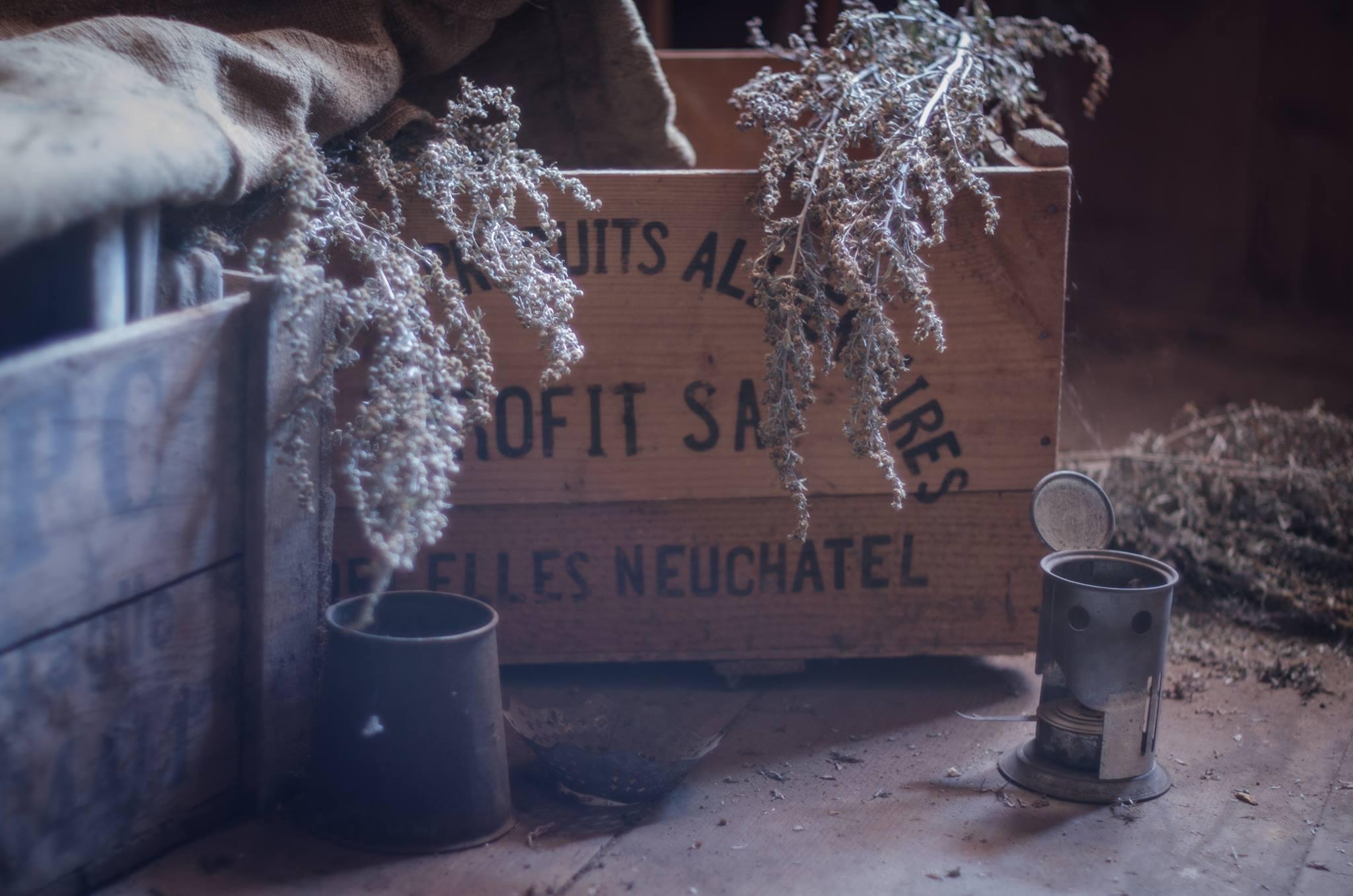 Distillerie La Maison des Chats