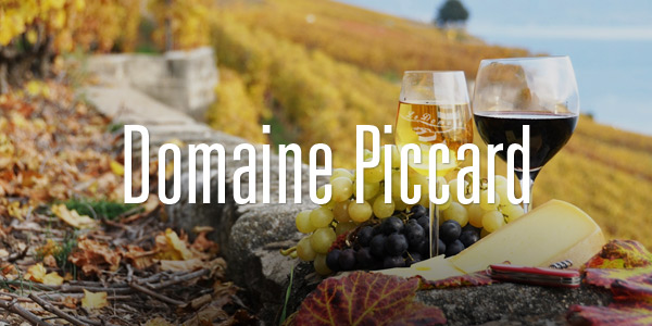 domainepiccard